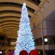 横浜&東京:みなとみらいのクリスマス風景