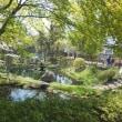 盛岡城跡公園近くの水の流れから!