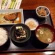 札幌に帰ってきました