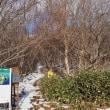 雪の恵山へ