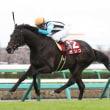 3/24 中山競馬:11R・第66回 日経賞(GⅡ)ガンコが直線「抜き返し」V!