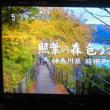 芦ノ湖の思い出!