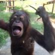 多摩動物公園に行ってきました!