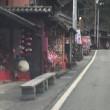四国を彩る花の舞!?