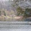長野県 聖高原 聖湖