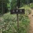 入笠湿原に入笠山