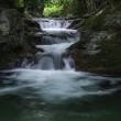 初夏の伏伸の滝(協和)