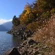 紅葉と富士山~本栖湖①
