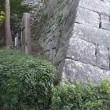 四国旅行-17-11月丸亀城