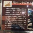 三瓶自然館サヒメル 三瓶バーガー 2016.06.19  「277」