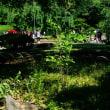 江戸太神楽の大道芸が小石川後楽園で