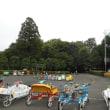 ~ 梅雨の中休みを公園で ~