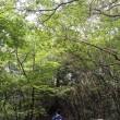 昭和の森から三郡山へ