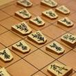 「将棋」のフリー素材(商用利用可能)