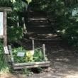 『赤城・鍋割山』春から始める登山教室第3回
