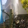 過密すぎる都市住宅に庭木は必要か