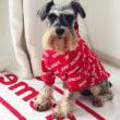 韓国 偽物 ブランド  シュプリーム 犬の服 安価 ペットヴェア 猫の服 防寒 ファッション