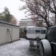 雪が積もってきました~相模原