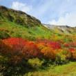 大雪山・高原沼 紅葉歩き