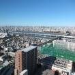 江戸川区からの富士山