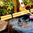 日本語を束縛するもの-俳句ブームの問題-