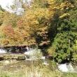 PCXで秋のお散歩。