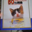 ネコと友達になる50の方法