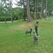 エルクの森パークゴルフクラブに行ってきました