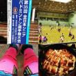 全日本シニアバトミントン選手権結果