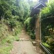 大田神社のカキツバタ