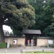 善福寺川緑地から荻窪4丁目あたりをチャリぶらしてきました。