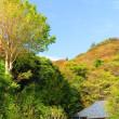 『初冬の寺社』 高来神社