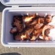 11月7日(火)オキメバル五目の釣果