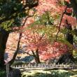 兼六園の紅葉です
