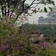 今日の姫路城 (2017.9.20)