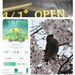 18/3/25週間ダイジェスト