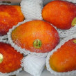 本物のマンゴー