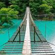 夢の吊り橋【静岡県】