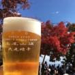 紅葉はちょっと早かった高尾山に初登山