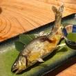 神保町魚金 弐(神田神保町)の「水茄子」「お刺身 六点盛スペシャル」「焼き牡蠣」「白エビのから揚げ」「鶏の半身揚げ」「鮎の塩焼き」等