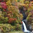 安倍の大滝&赤水の滝