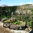 噴水の水盤池