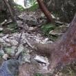 世界遺産大峯奥駆道を歩く  夏の終わりの南奥駈 行仙岳から平治宿を往復 2017年9月3日 その3
