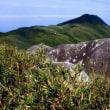 八重山富士・桴海於茂登岳で道を失う