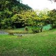 八田寺町近辺