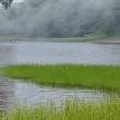 霧の大沼園地