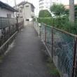 散歩の風景、狭い道