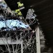 『残り雪』 鴫立庵