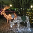 Aichi / Chrismas illumination( クリスマス・イルミネション)