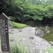 こんな所に流れが・・・ 小石川後楽園:文京区